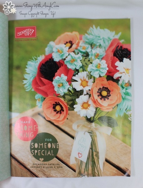 2015 Stampin' Up! Occasions Catalog - Stamp With Amy K
