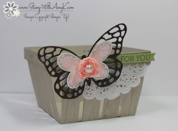 Butterfly Basics 6 - Stamp With Amy K