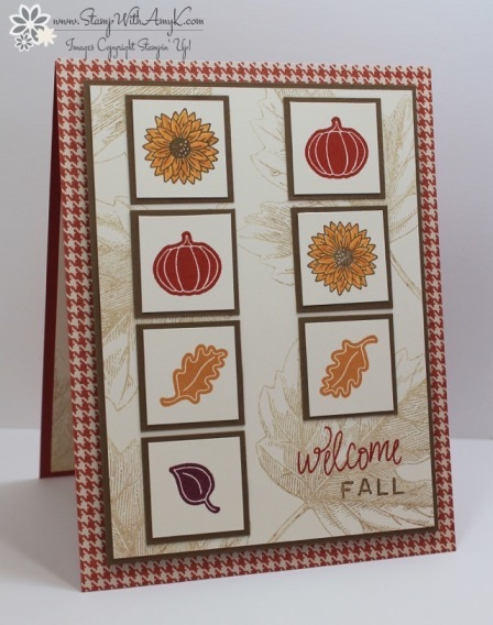 Everyday Occasion - Stamp With Amy K