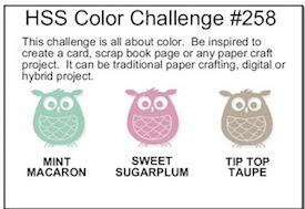 hss-color-challenge-001